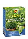 COMPO Buchsbaum- und Ilex Langzeit-Dünger 2kg
